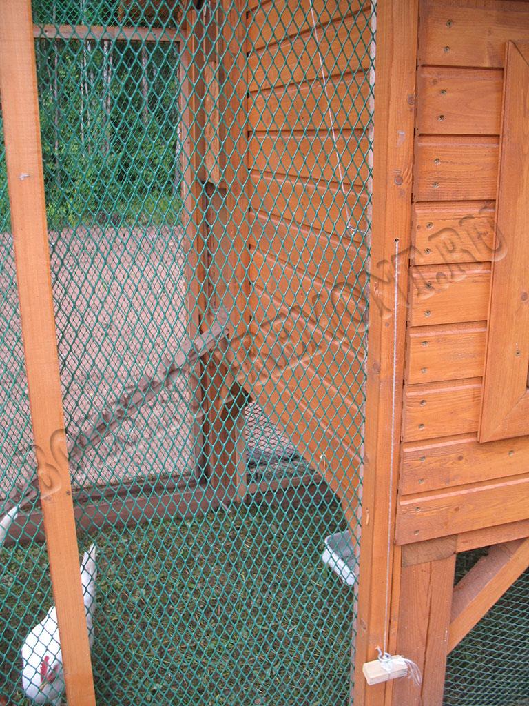 Дверь на курятник своими руками